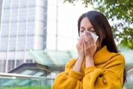 Little Himalaya allergies